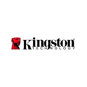 kingston  en team